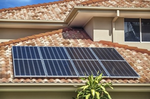 Will joins with other counties to offer lower priced solar